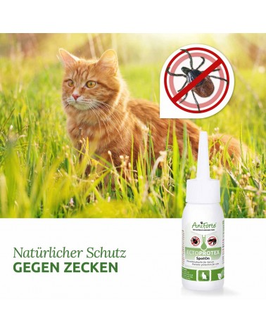 Ectoprotex cat - Spot On zur Zecken- & Parasitenabwehr 50ml AniForte®